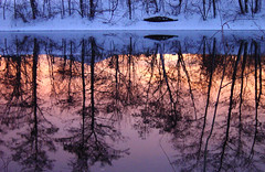 mystic river (.Leili) Tags: blue trees winter sunset sky snow cold reflection water reflections river walking geotagged us bravo purple massachusetts newengland calm 16 reflexions mystic medford mysticriver leilitowfigh impressedbeauty explore020306 goldenphotographer 1999sonydscp1