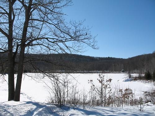 Lac Lusk