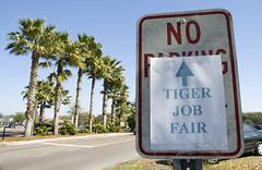 Tiger Job Fair