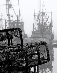 Crab Pots - Boats - Fog (Steven Schnoor) Tags: morning travel bw usa color colour reflection tourism water colors monochrome vertical fog marina canon boats outdoors daylight boat photo washington fishing colours outdoor  crab nopeople tourist commercial pacificnorthwest environment steven nautical dslr westport washingtonstate pnw washingtoncoast bluecollar graysharbor westportwashington westernwashington schnoor saywa experiencewa abigfave imagesmyth experiencewashington wstpic07 stevenschnoor stevenschnoor