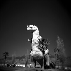 ~ You're Built Like a Car, You've Got a Hub Cap Diamond Star Halo (Thank you, T-Max and T-Rex) (Mackeson) Tags: holga trex mackeson cabazondinosaurs mrrex cabazoncalifornia claudekbell thewheelinnrestaurant
