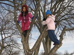 Noor and Penelope in a tree (redmudball) Tags: lansing noor treeclimbing