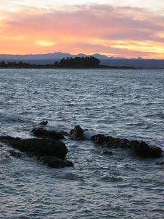 Nelson, Rabbit Island