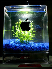 Mac G4 Cube Fish Tank