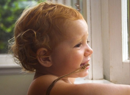 Eloise at the Window