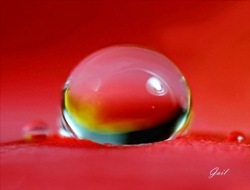 One of my favorite water drop shots