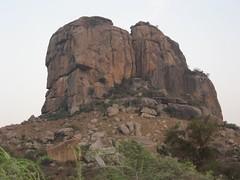 Puli Gundu
