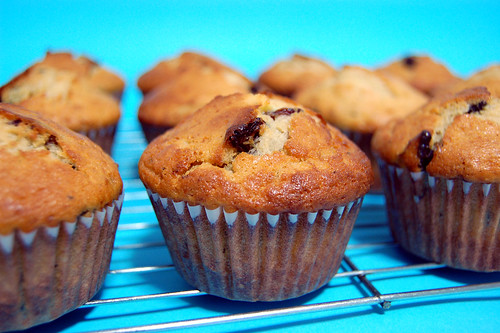 Cranberry Chocolate Chunk Muffins