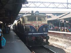 20116