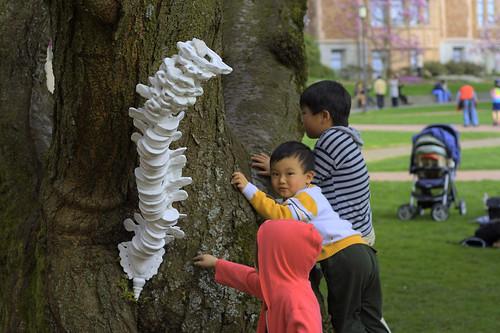 Kids & Spine