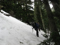 traversing steep slopes on the s. side of the w. ridge