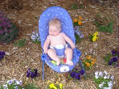 Resting in the Garden