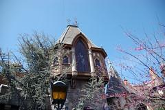 DisneyMarch (30)