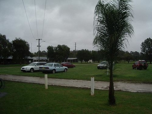 Taree show-ground