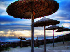 Dance for the sun (G.A.O.) Tags: sun sol beach sunrise playa amanecer mallorca cormoran anawesomeshot colorphotoaward superbmasterpiece
