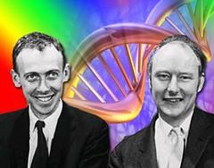 Watson and Crick copy
