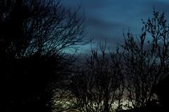 Night Sky (The Wiccan) Tags: night darkness nightsky