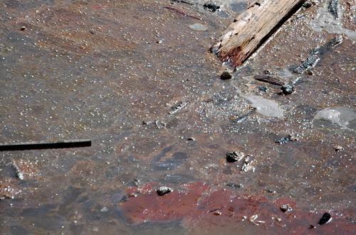 Roebling Slime 0422