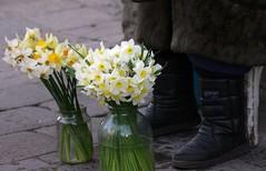 Цветы к ногам спешат упасть... (Anatoliy Odukha) Tags: flowers lviv lvov sigma70300