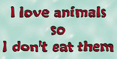 love_animals