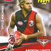 Essendon - Andrew Lovett footie man
