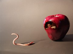 Hide & Seek (Fer Gregory) Tags: pictures auto camera pink light shadow red milan art apple nature fruits fruit mxico mexicana photoshop bug de mexico grey photo interestingness interesting icons flickr foto photographer with shot artistic photos earth background sony mother taken 8 cybershot myspace clip mexican fotos fernando mexique apples worm gregory 80 f828 mexicano camara con recent dsc cyber megapixel fotografo tomadas hi5 relevant freg dscf828 artisticas megapixeles impressedbeauty fr3g flickrphotoaward cybershotdscf828 reg