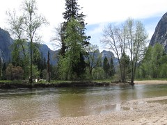 Yosemite Trip Spring 2007 - #20 (mattolson76) Tags: yosemite mercedriver