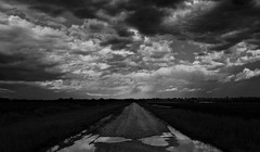 Puddles without poodles (momrunninglate) Tags: blackandwhite rural road rain reflection shadows contrast weather kansas onepointperspective landscape sky clouds light