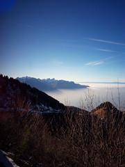 IMG_20161208_125954 (Puntin1969) Tags: telefonino svizzera viaggio vista scorcio montagna neve trenino