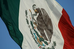 Mexico Flag / Bandera de Mexico