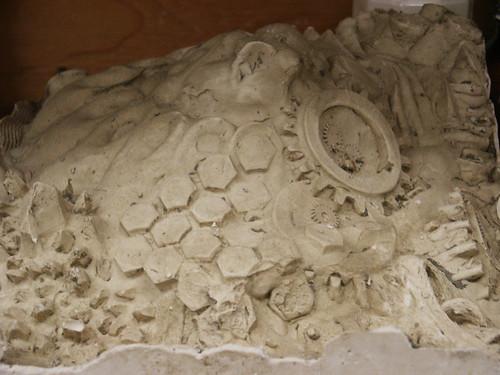 Plaster Close-Up