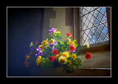Pyrford 27 Jan 2007 (strussler) Tags: flowers light england church window canon eos sigma surrey stnicholas 5d hdr 3xp pyrford tonemapped artlibre 5for2 anawesomeshot colorphotoaward picswithframes