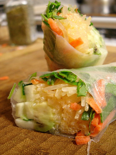 Avocado Spring Roll