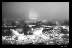 My Dream. (Nellie Vin) Tags: bw white seascape black art film sailboat fineart fine grain prints kyocera limited limitededition yaschica shieldofexcellence nellievinocean