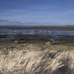 (dabi) Tags: landscape scotland eastlothian aberlady aberladybay instantfave sescape