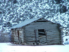 Tin Roof (brettmsly) Tags: old winter snow cold shed s5000 shack