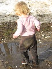 mudpuddle1
