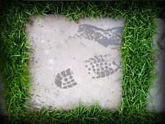 Wet Footprint (Mixxie Sixty Seven) Tags: green grass pavement footprints fakelomo footprint fauxlomo lomoeffect grassy