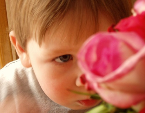 ...taking time to smell the roses...