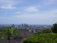 DSC00516 (jeremytheys) Tags: hawaii honeymoon waikikibeach honalulu