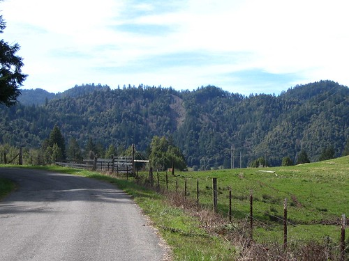 East of Kneeland
