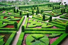 Château de Villandry Gardens
