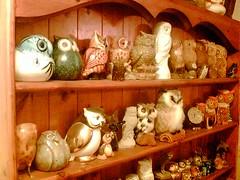 Tippy's Owl Collection - 1 (medhekar2000) Tags: cameraphone birds nokia cellphone collections utata owl mobilephone miscellaneous rkmnokia3230 utatafeature