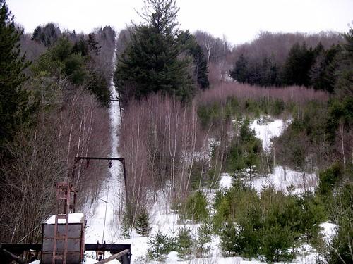 Overgrown ski area