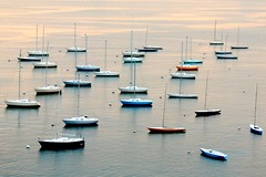 Boston Harbor Boats (Today is a good day) Tags: usa topf25 boston geotagged topf50 topf75 dusk gorgeous toothpicks zen yachts bostonharbor moored picturethis buoyant abigfave flickrdiamond rectanglespinnedwithtoothpicks