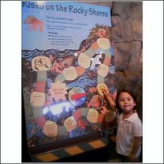 Too cute (breyeschow) Tags: aquarium bay monterey analise