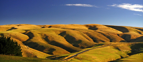 Strath Taieri in Early Autumn