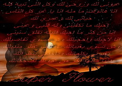عيوني لك وروحي لك (Nourah.A.Edhbayah (Super Flower♥إظبيه)) Tags: flower super لك عيوني وروحي