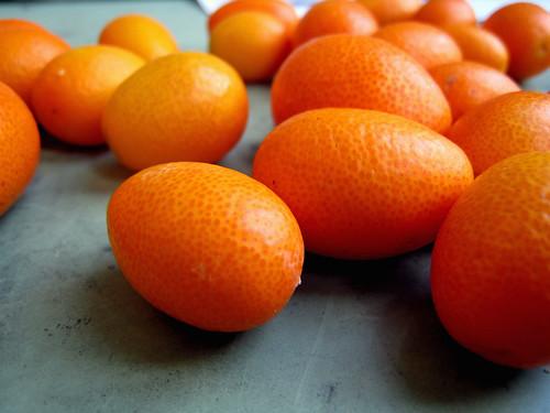 kumquats by orphanjones, on Flickr