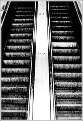 both up (jonas_k) Tags: urban blackandwhite bw berlin monochrome up germany subway deutschland escalator ubahn alexanderplatz sw schwarzweiss mundane rolltreppe